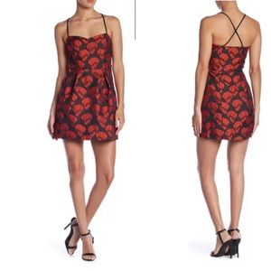 Romeo and Juliet couture rose dress M